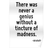 There was never a genius without a tincture of madness. Poster