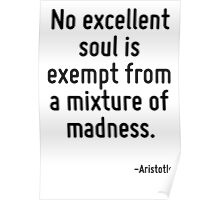 No excellent soul is exempt from a mixture of madness. Poster