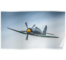Two Seat Sea Fury 2014 Poster