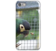 Birds and the Bee's  iPhone Case/Skin