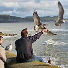 Chip  On  A  Stick - Lyme Regis, Dorset,Uk by lynn carter