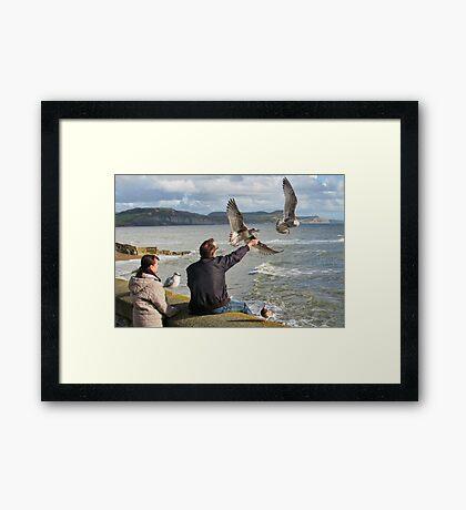 Chip  On  A  Stick - Lyme Regis, Dorset,Uk Framed Print