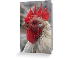 Cockerel Greeting Card