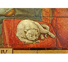Queen Katharine & Henry VIII  - King of England Cat Photographic Print