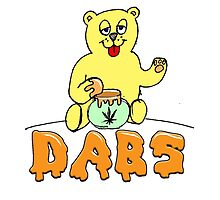 DABS - honey bear by James Chetwald Mattson