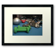 Mikino doesn't workout on Caturday's!  Framed Print
