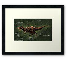 Tyrannosaurus Rex Skeleton Study Framed Print