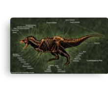 Tyrannosaurus Rex Skeleton Study Canvas Print