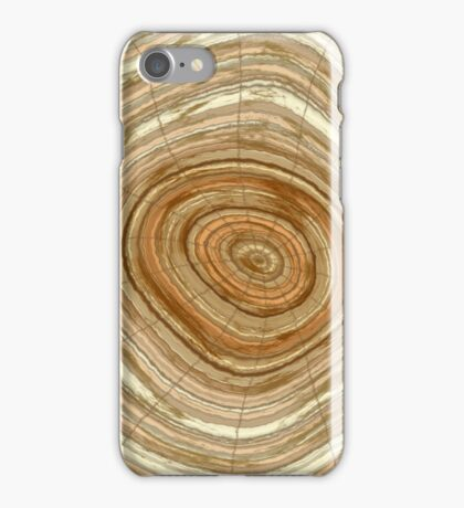 Annual rings in cut tree  iPhone Case/Skin