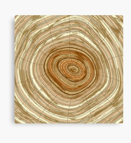 Annual rings in cut tree  Canvas Print