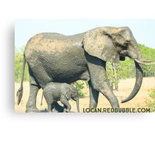 Majestic Elephants Mama & Baby Canvas Print
