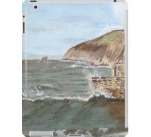 Port Wrinkle 2    by John Rees iPad Case/Skin