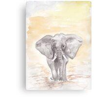 The Elephant Original Watercolour Canvas Print