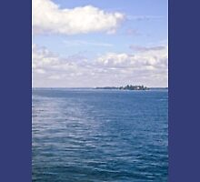 The St. Lawrence River. ON Canada and New York, USA seen from tour boat T-Shirt