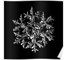 Snowflake vector - Gardener's dream black version Poster
