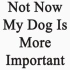Not Now My Dog Is More Important  by supernova23