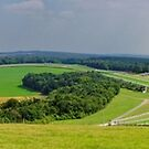 Panorama of Glorious Goodwood  by Stephen Frost