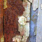 Rusty Abstract by Lyn Fabian