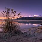 Morning Bliss - New Zealand by Michael Treloar