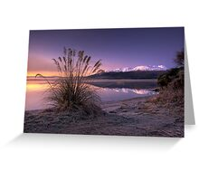Morning Bliss - New Zealand Greeting Card
