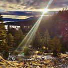 Sunrise at Eagle Falls Trail, Lake Tahoe by Robin Black
