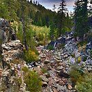 Eagle Falls Trail, South Lake Tahoe by Robin Black