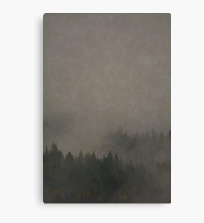 Autumn Moods aged Misty Forest nature photo Canvas Print