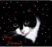 Merry Christmas (2) Photographic Print