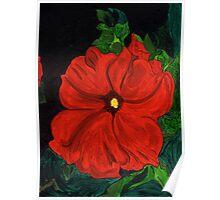 Hot Red Petunia Poster