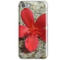 Spicy Jatropha  iPhone Case/Skin