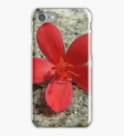 Spicy Jatropha  iPhone Case/Skin
