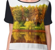 Autumn Chiffon Top