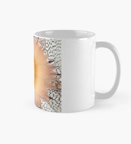 Astrophytum Bloom Mug