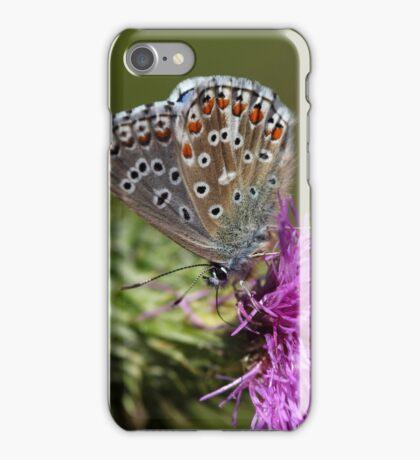 Adonis blue butterfly (Polyommatus bellargus) iPhone Case/Skin