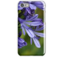 Lily of the Nile  (Agapanthus sp.) iPhone Case/Skin