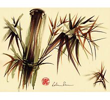 """Bamboo Symphony"" Original acrylic wash & brush pen painting Photographic Print"