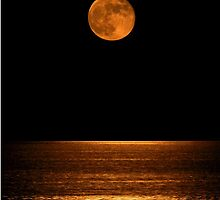 Harvest Moon Over Clear Lake by Nathan Little