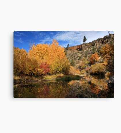 Autumn Reflections In The Susan River Canyon Canvas Print