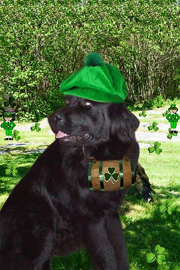 ✿¸¸.•*¨*✿I TELL U ITS NOT THE BEER.. I'M SEEING LITTLE GREEN MEN ✿¸¸.•*¨*✿ by ╰⊰✿ℒᵒᶹᵉ Bonita✿⊱╮ Lalonde✿⊱╮