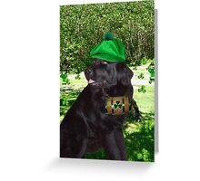 ¸¸.•*¨* I TELL U ITS NOT THE BEER.. I'M SEEING LITTLE GREEN MEN ¸¸.•*¨* Greeting Card