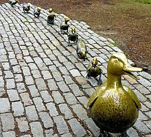 Make Way for Ducklings Study 1 by Robert Meyers-Lussier