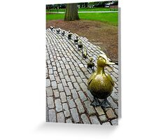 Make Way for Ducklings Study 1 Greeting Card