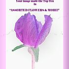 Banner Assorted Flowers & More by Ann Warrenton