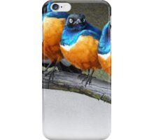 meet the snarkers- the original angry birds iPhone Case/Skin