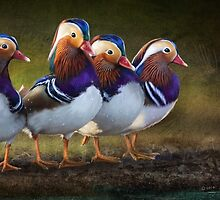 four brothers mandarin ducks by R Christopher  Vest