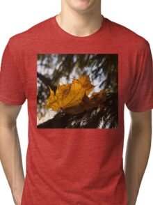 Caught in the Needles -  Tri-blend T-Shirt