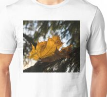 Caught in the Needles -  Unisex T-Shirt