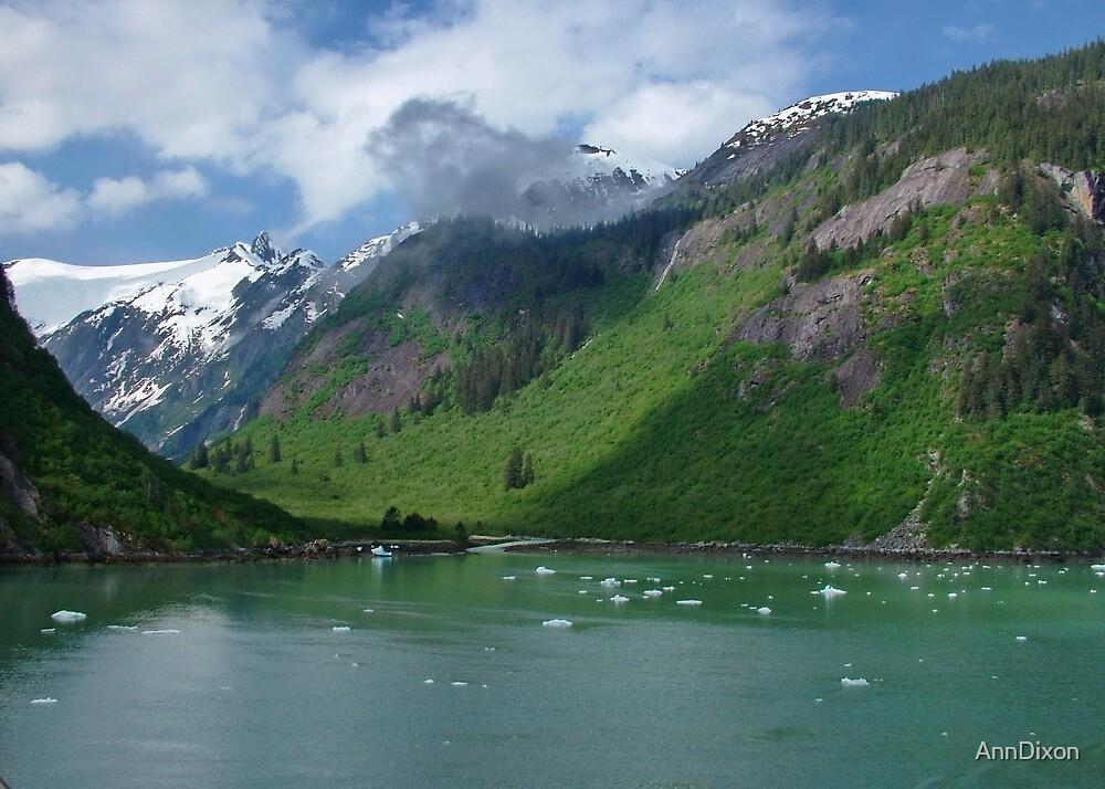 Inside Passage to Alaska by AnnDixon