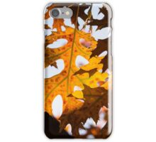 Celebrating Autumn Colors -  iPhone Case/Skin