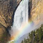 Rainbow on the Lower Falls of the Yellowstone by Kenneth Keifer